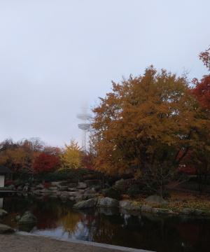 Heinrich-Hertz-Turm bei Nebel, Blick aus dem japanischen Garten